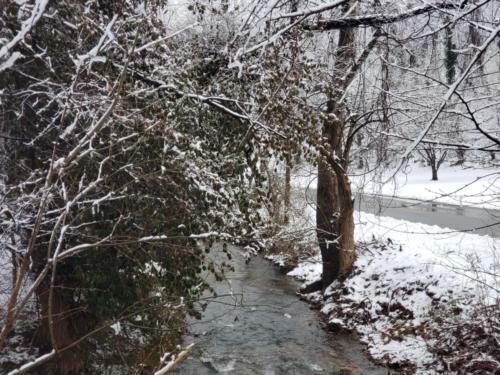 Snow around Radford (3)