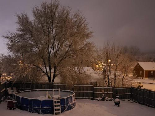 Snow around Radford (6)